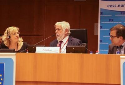 524. plenarno zasjedanje EGSO-a
