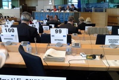 Hrvatski promatrači na 490. plenarnoj sjednici EGSO-a (22.- 23. svibnja 2013., Bruxelles)