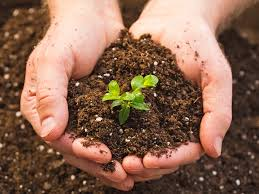 Poziv na webinar ˝Joining forces for soil protection in the EU's Green Deal˝